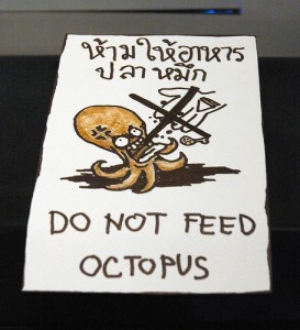do not feed optopus